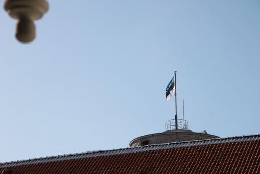 藍、黑、白的愛沙尼亞國旗