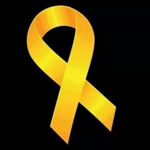 臉書滿佈的黃絲帶