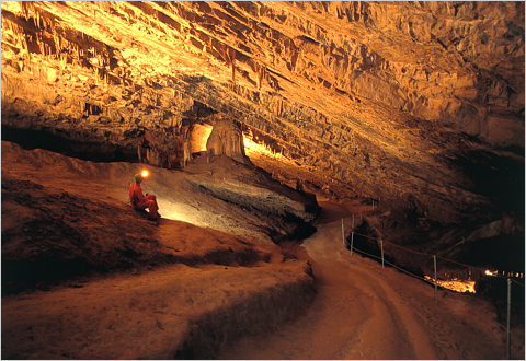 Škocjan Caves
