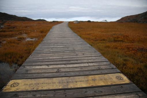Ilulissat Icefjord 是其中一個聯合國封為世界遺產
