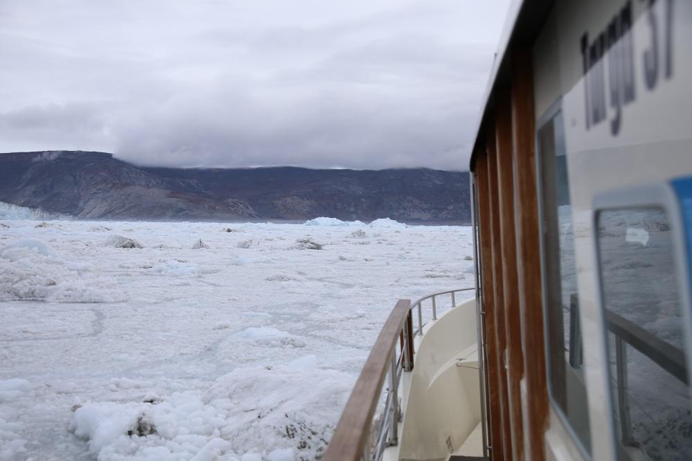 越接近 Eqi Sermia,海上的浮冰就越多